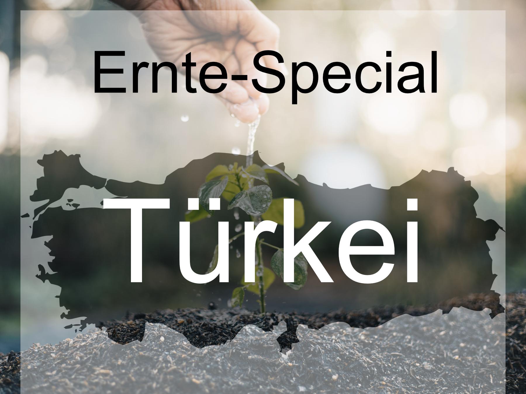 Blog-Bild-Ernte-Special-Turkei