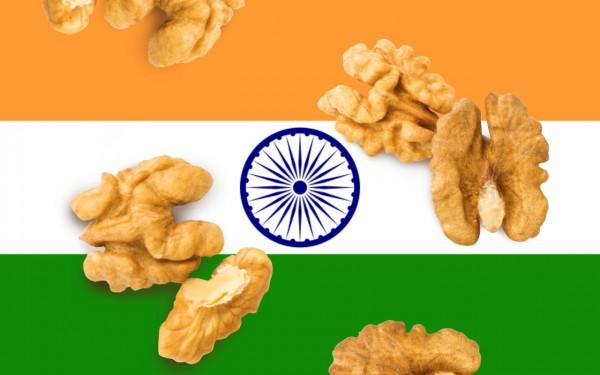 Walnuss-Indien