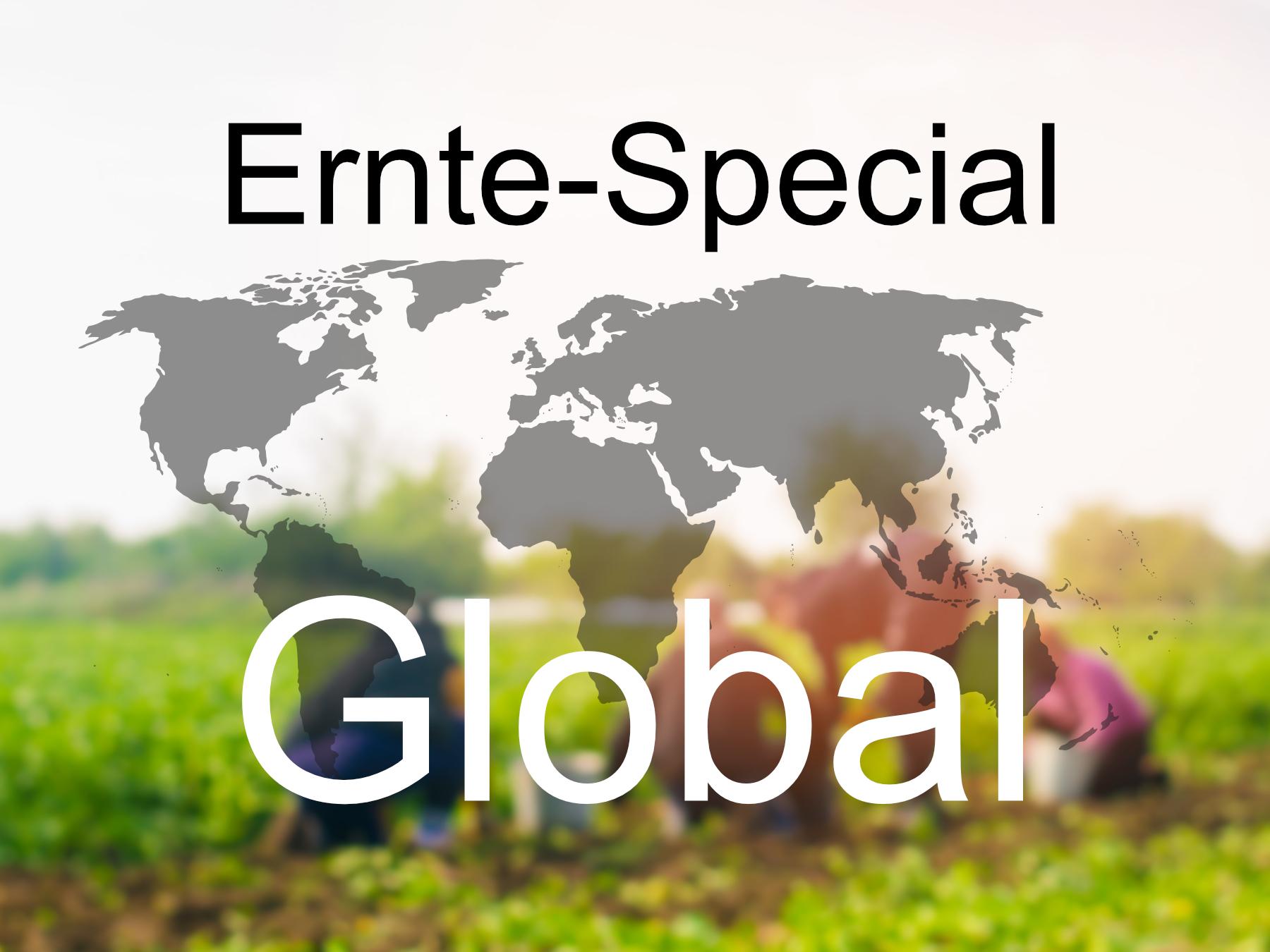 Blog-Bild-Ernte-Special-Global