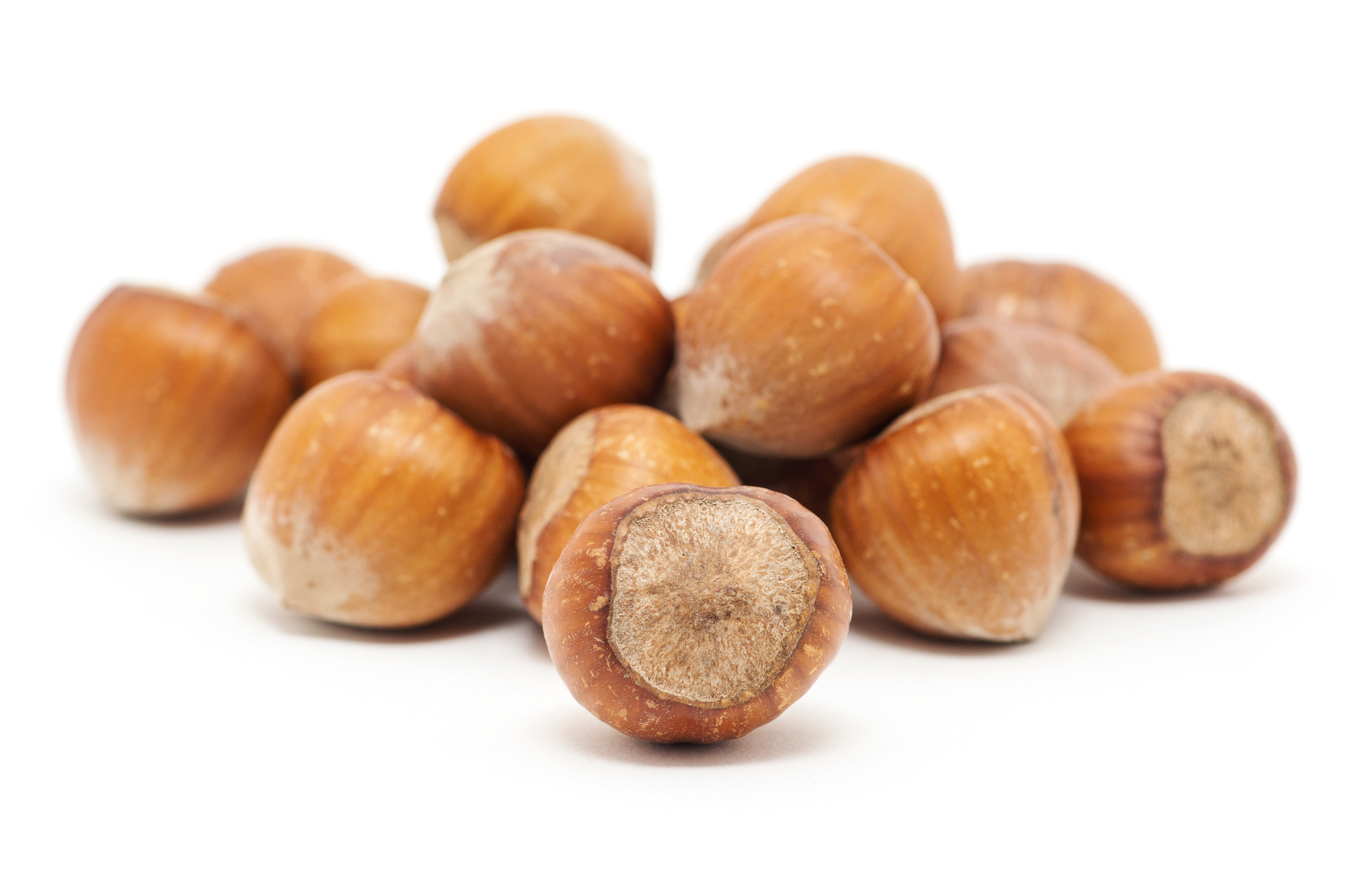 Hazelnuts-on-white-background-4928x3264-300-DPI-shutterstock_422474713